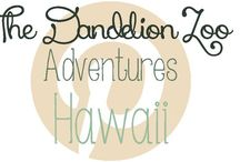 Adventures: Hawaii / Travel ideas for Hawaii / by Zookeeper