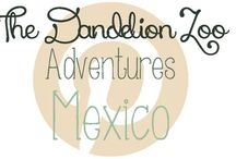 Adventures: Mexico and South America / Travel ideas for Mexico and South America / by Zookeeper