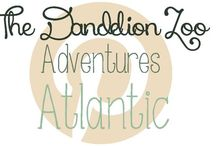 Adventures: Atlantic / Travel ideas for the Atlantic / by Zookeeper