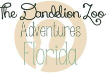 Adventures: Florida / Travel ideas for Florida / by Zookeeper