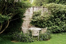 Garden / by Frida Hultman