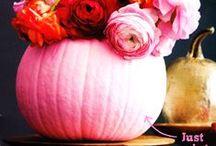 Pumpkin Chic / by Christina Crawford