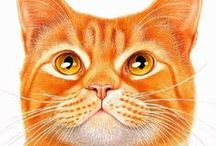 All Those Red (and Orange and Ginger and Marmalade) Cats / by Pat McCambridge
