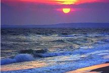 Coastal Vibe / Sand, salt and surf... life along-side the sea! / by Leathered Pearls