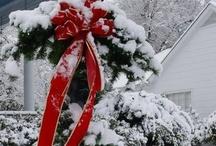 Winter ⛄ Wonderland / by Susie Fellner