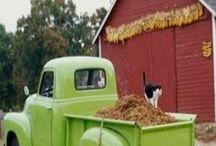 Vintage Truck Love