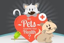 Pet Infograhics / by Central Oklahoma Humane Society