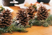 Decoración con piñas / Decoración barata realizada con piñas.Crea rincones, centros de mesas, árboles de navidad, y cientos de diferentes cosas con piñas.