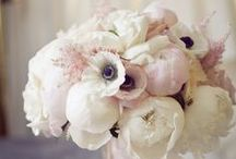 Weddings: Flower inspiration / Blooming beautiful inspiration from across the world / by Koren Harvey