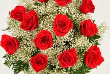 Romance & Roses / Our rose varieties are selected for their beautiful colors, shape and quality.  Our buyers travel the globe in search of the latest growing & shipping techniques to bring you the very best! Schnucks Florist & Gifts, Saint Louis, MO / by Schnucks