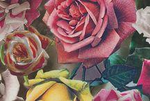 Flora in Art, Fashion & Life / by Su-B