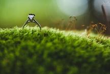 Wedding Photography / by Doug Levy