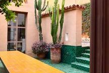 Palm Springs Style Gardening in the Desert / Ideas and inspiration for desert gardeners with some really great architecture too! / by Maureen Gilmer