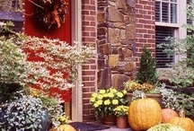 Fall / by Wreaths For Door (Laurie Karras)
