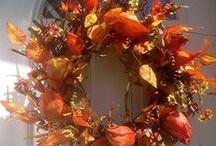 Fall Door Wreaths / by Wreaths For Door (Laurie Karras)