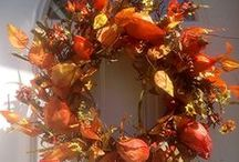 Fall Door Wreaths / by Wreaths For Door (Laurie Karras)