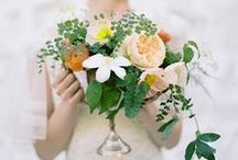 floral shoot inspiration / by Nadia Hung