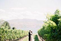 :: fine art wedding:: kelowna weddings / Kelowna Wedding Photography  / by Nadia Hung Photography