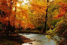 Autumn Days / by Debbie Howard