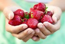 Berry Good Picking / by Debbie Howard