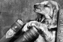 For the dog lover / by Loopy Librarian