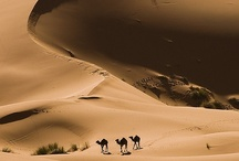 Travel - AFRICA