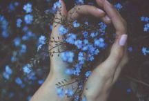 P R E T T Y / the pretty things