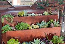 stuff to make the garden purrrrdy