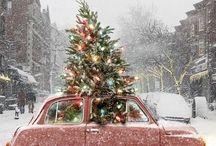 Christmas trees / by Samantha Lloyd Bruchie