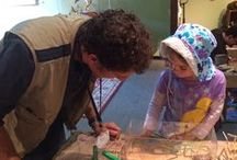 Curiosity Lab / Hands on - bring your curiosity - All Ages! Santa Barbara Museum of Natural History