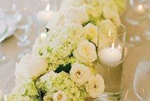 Wedding Inspiration / by Rikkea Lee
