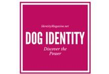 Dogs & their Identity / Every dog has its own unique personality.
