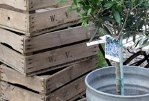 ♥ ALL YOU CAN MAKE WITH PALLETS, FRUITBOXES AND WOOD  ♥ / by ✮ STIJL!  bij Willeke ✮
