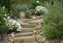 Outdoor/Garden Plans & Places...