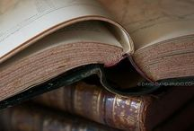 Reading / Quotes