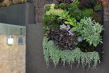 Garden - vertical garden inspiration