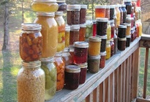 Canning...a lost art! / keeps my mother, grandmother and sister close at hand ... Thank you, Janice for inspiring me! ... plus there is something so satisifiying about a job well done! / by Anne McErlean