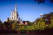 Disney Trip - Magic Kingdom / by Sara Clark