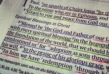 Bible ... Study The Word! / by Anne McErlean