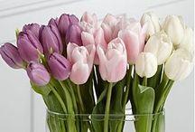 Te mando flores...