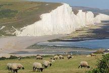 Our british summer trip :-) / Brighton, London, Rye, Seaford, Arundel, Oxford... / by Coraline VdV