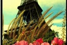 Paris Pictures / Romantic (and not so romantic) Paris Pictures and photos. Vintage Paris pictures and modern photos. See this board here for my own Paris photos (some are quite nice if i can say so, others are meh..): http://www.pinterest.com/juicystuff/my-paris-photos/