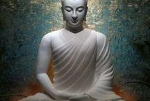 Buddha / by Linda Myers
