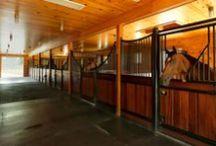 Hamilton Equestrian