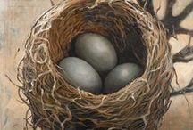 nests and eggs / bird nests, nests, nest art