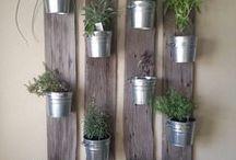 Gardening Ideas Indoors