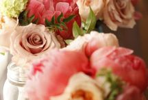 Blooms / Bouquets and beautiful flower arrangements.
