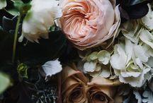 Fab. Floral. / Beautiful inspirational floral arrangements. / by Lindsey Lang Design Ltd.