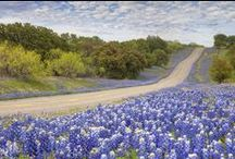 Blue Falls, Texas series / Images relating to my Blue Falls, Texas contemporary romance series for Harlequin American Romance