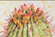 AndreaMerican.com Desert Watercolors / Original paintings in watercolor by local AZ artist Andrea Merican. For her full line of work, go to www.andreamerican.com